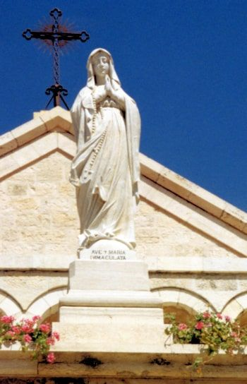 Mary the Immaculate Conception
