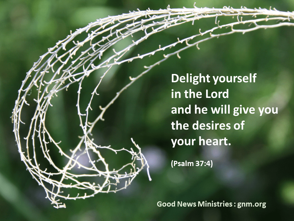 God's Word for you today